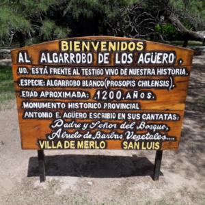Cartel Algarrobo Abuelo entre 800 y 1200 años