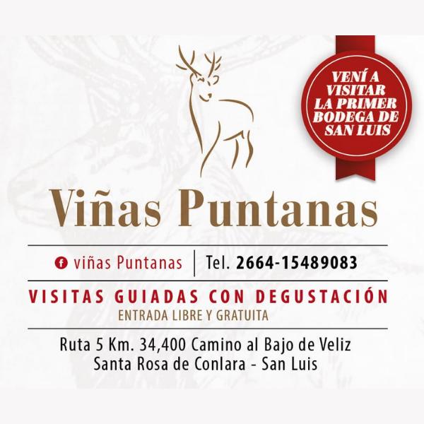 Viñas Puntanas Logo
